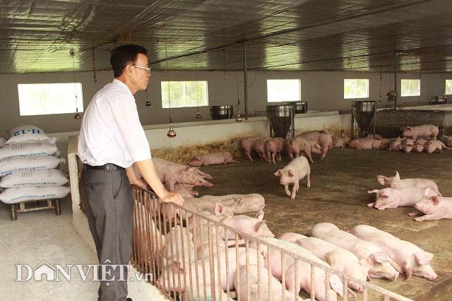 """Lãi 30 triệu đồng/tháng nhờ biệt tài hô biến """"rác"""" thành phân bón - 4"""