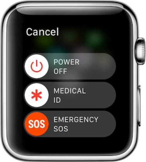Thoát chết nhờ dùng Apple Watch gọi số khẩn cấp - 3