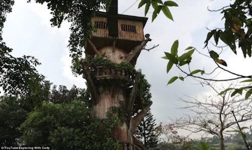Vẻ đẹp ma mị bên trong công viên bỏ hoang ở Philippines - 9