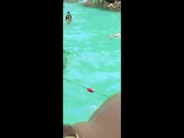 Sốc: Bé trai đuối nước nổi bồng bềnh ở bể bơi, du khách vẫn không hề biết