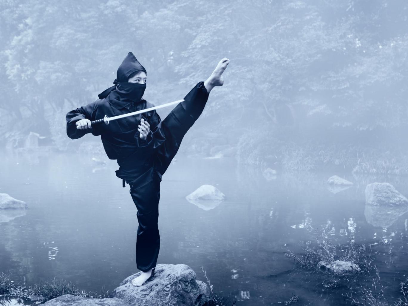 Nhật Bản đang thiếu ninja trầm trọng - 1