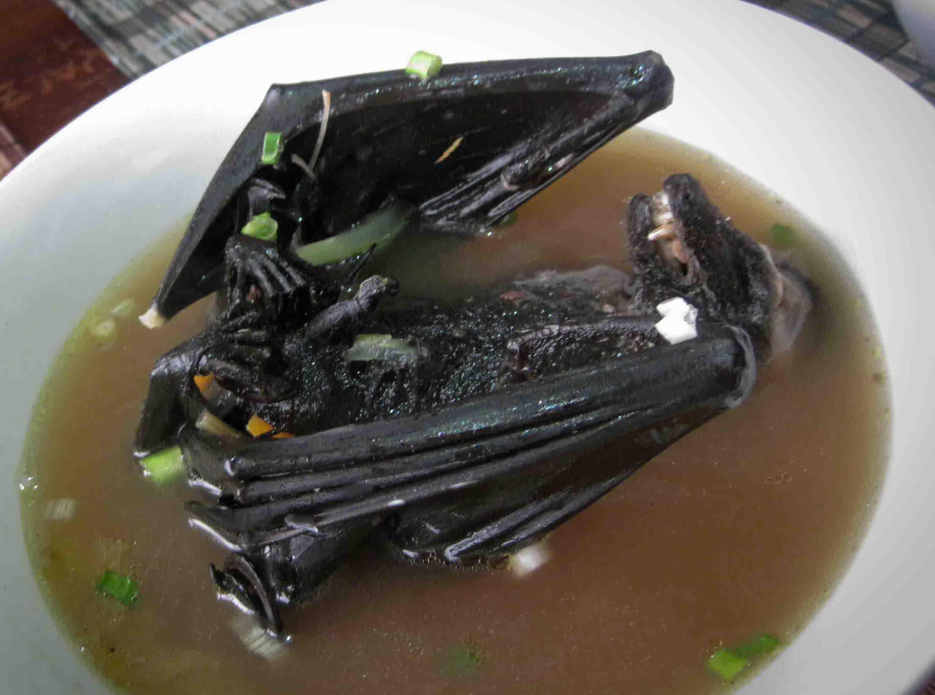 Phát khiếp với đặc sản súp dơi nguyên con - 2
