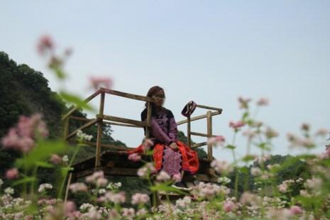 Say lòng hoa tam giác mạch cuối mùa xứ Tây Bắc - 10