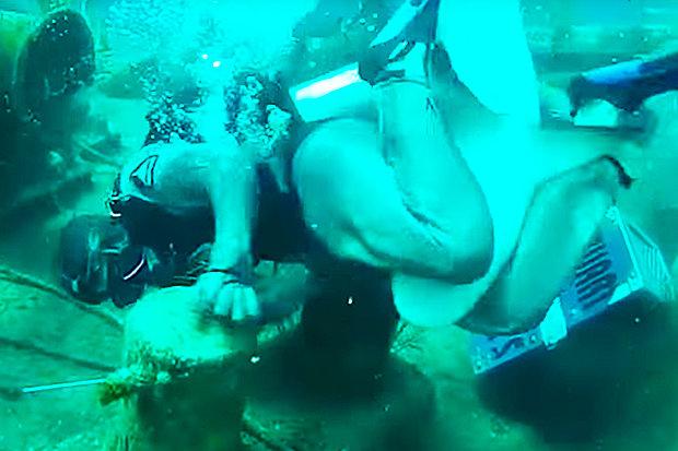 Video: Hãi hùng cảnh thợ lặn bị cá mập cắn vào chỗ hiểm - 2