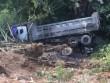 Xe tải rơi vực sau khi đâm trâu nghé chết la liệt trên đường