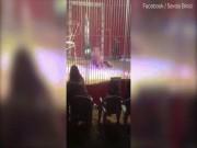 Thế giới - Pháp: Sư tử cắn cổ người, lôi xềnh xệch trong rạp xiếc