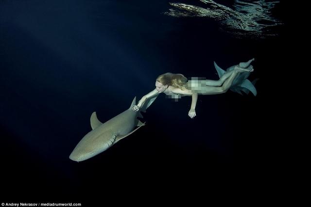 Khỏa thân ung dung bơi cạnh đàn cá mập chết người - 2