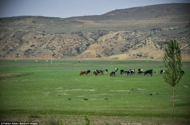 """Trải nghiệm có """"một không hai"""" trên chuyến tàu chạy xuyên Mông Cổ - 8"""