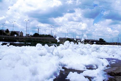 """""""Tuyết"""" phủ trắng kênh đen khiến người SG ngỡ ngàng - 11"""
