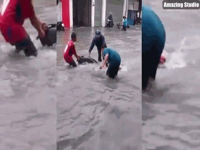 Clip: Nước chảy cuồn cuộn như lũ, cuốn trôi xe máy trên phố Sài Gòn