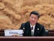 """Chủ tịch TQ nói thế giới phải đoàn kết như """"đàn ngỗng"""""""