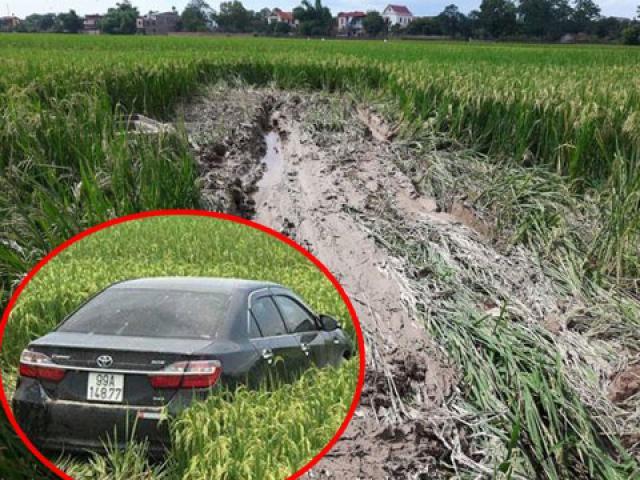 Lái xe Camry tông chết 3 học sinh ở Bắc Ninh khai gì?