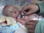 Thế giới - TQ: Chó đào bới điên cuồng, lộ ra bé sơ sinh bị chôn sống