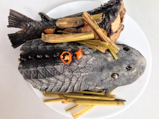 Cá lau kính hấp sả, món khoái khẩu của dân nhậu - 1