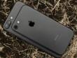 Apple tung video quảng cáo chế độ chụp chân dung trên iPhone 7 Plus