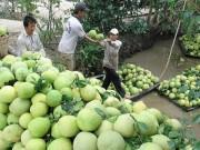 Thị trường - Tiêu dùng - Những kiểu làm ăn 'lạ đời' của thương lái Trung Quốc