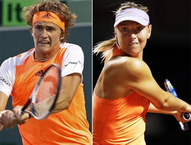"""BXH tennis 22/5: """"Thần đồng"""" Zverev lên số 10, Sharapova top 200 - 1"""