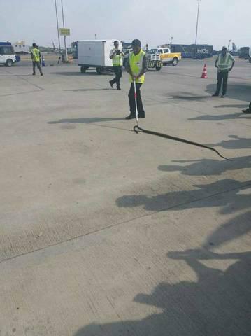 Trăn khổng lồ bò vào sân bay Ấn Độ, suýt lên máy bay - 3
