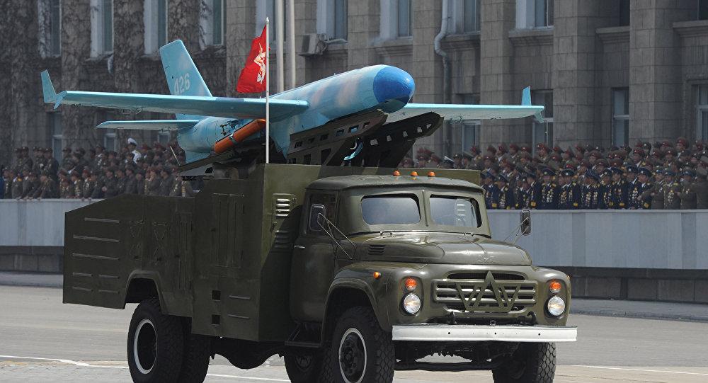Triều Tiên có thể dùng UAV tấn công Seoul trong 1 giờ? - 1