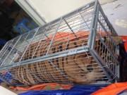 Tin tức trong ngày - Mua hổ sống nặng 200 kg từ Nghệ An ra Hà Nội nấu cao