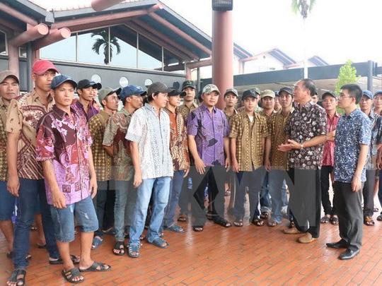 5 tàu cá bị Indonesia bắt giữ trong vùng biển Việt Nam - 1
