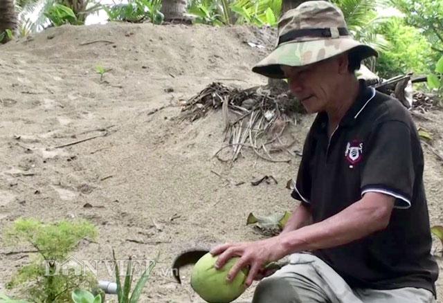 """""""Đút túi"""" trăm triệu đồng/năm từ 70 cây dừa xiêm - 4"""
