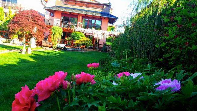 Ngắm khu vườn đẹp như thiên đường của mẹ Việt ở Séc - 10