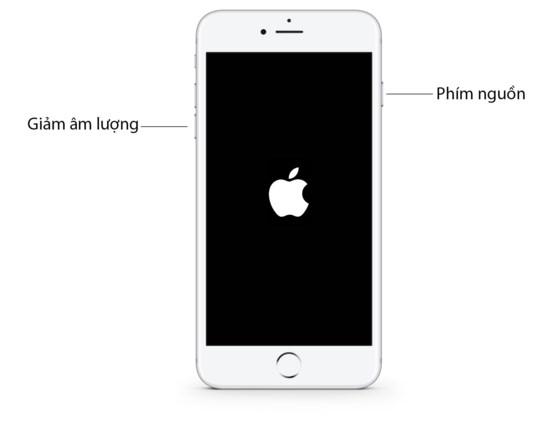 Sửa lỗi không thể cập nhật ứng dụng trên iPhone - 3