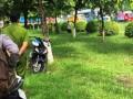Tình tiết bất ngờ vụ cô gái trẻ chết bí ẩn trên thảm cỏ trong công viên