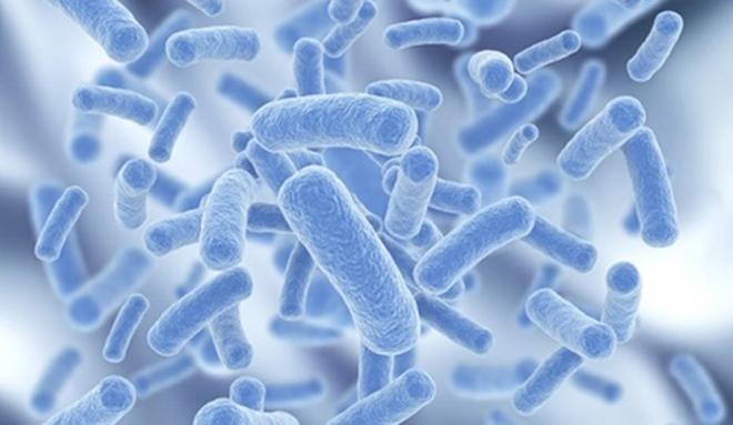 Người viêm đại tràng dùng thuốc kháng sinh thế nào cho đúng? - 2