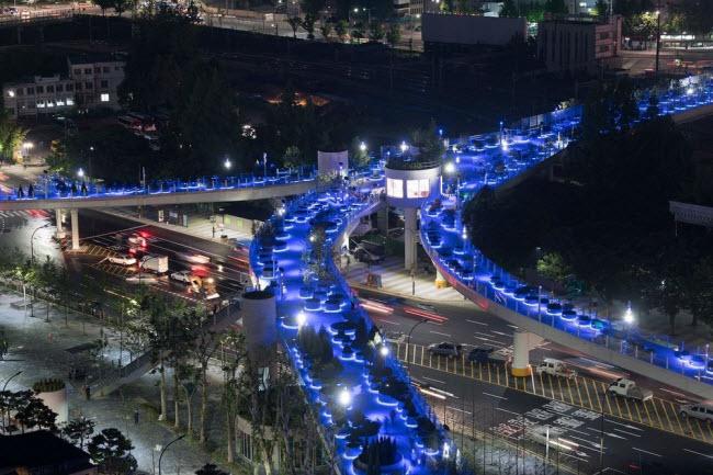 Cầu vượt bỏ không hóa khu vườn trên cao đẹp lạ ở Hàn Quốc - 9