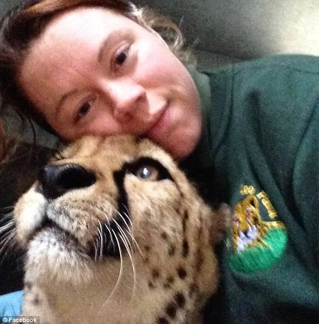 Hổ trắng cắn chết nhân viên vườn thú gây chấn động Anh - 3