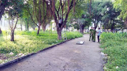Tá hỏa phát hiện xác người trên cây trong công viên - 1