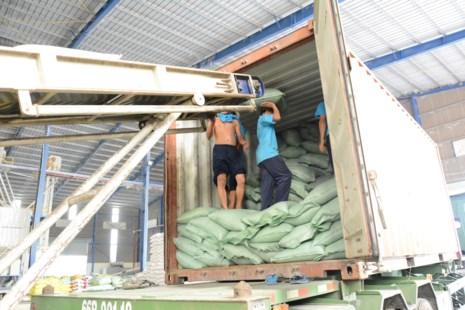 Trung Quốc 'ăn' gần 50% lượng gạo Việt Nam - 1