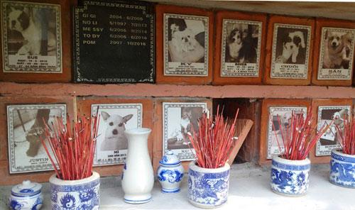 Nghĩa trang chó mèo độc nhất Hà Nội - 2