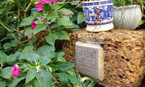 Nghĩa trang chó mèo độc nhất Hà Nội - 10
