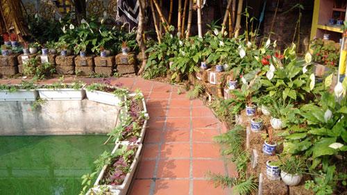 Nghĩa trang chó mèo độc nhất Hà Nội - 11