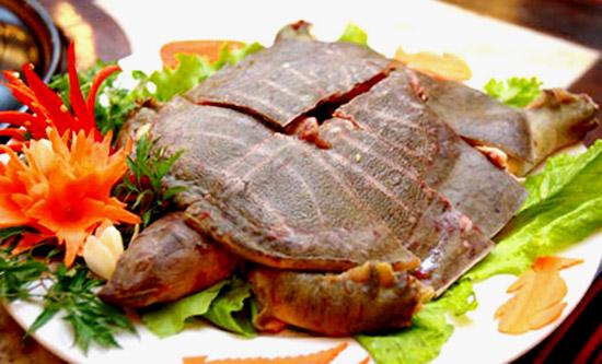 Những thực phẩm cấm kỵ ăn cùng lươn và ba ba - 6