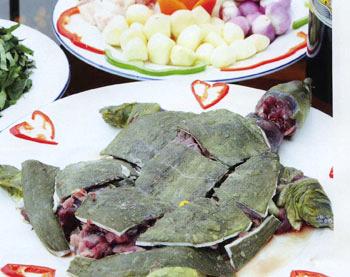 Những thực phẩm cấm kỵ ăn cùng lươn và ba ba - 7