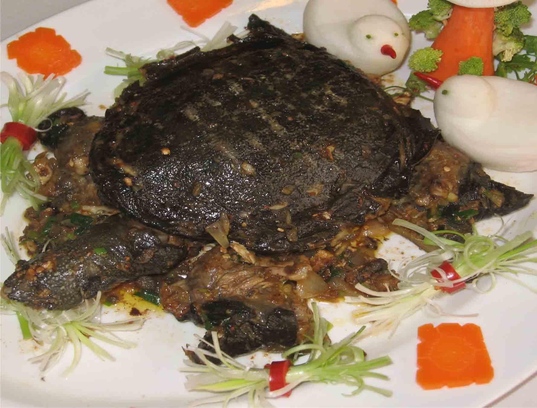 Những thực phẩm cấm kỵ ăn cùng lươn và ba ba - 9