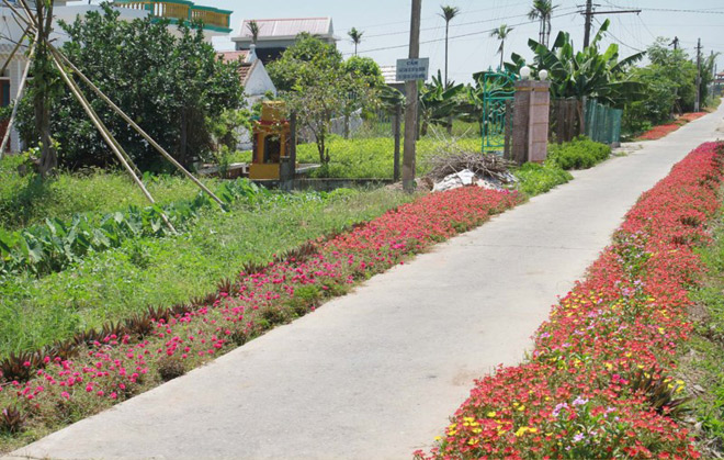 Ngỡ ngàng những con đường làng rực rỡ sắc hoa - 6