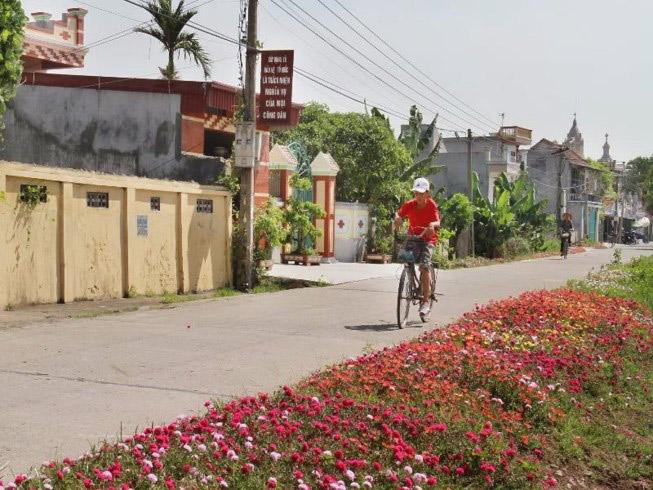 Ngỡ ngàng những con đường làng rực rỡ sắc hoa - 2