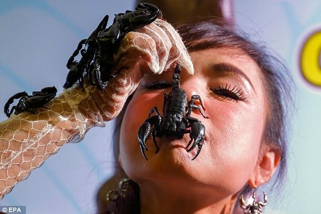 Cô gái Thái Lan để chục con bọ cạp cực độc bò trên mặt - 5