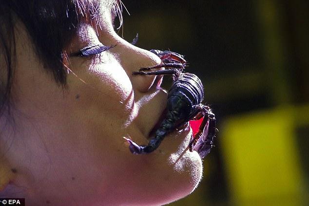 Cô gái Thái Lan để chục con bọ cạp cực độc bò trên mặt - 4