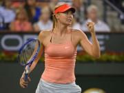 Thể thao - Tin HOT thể thao 4/6: Sharapova âm thầm chuẩn bị Wimbledon