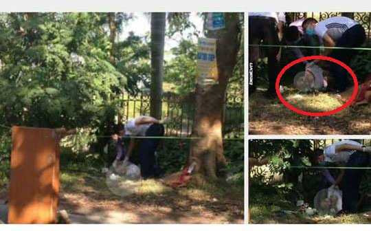 Người đàn ông gục chết bên gốc cây, nghi do nắng nóng - 1