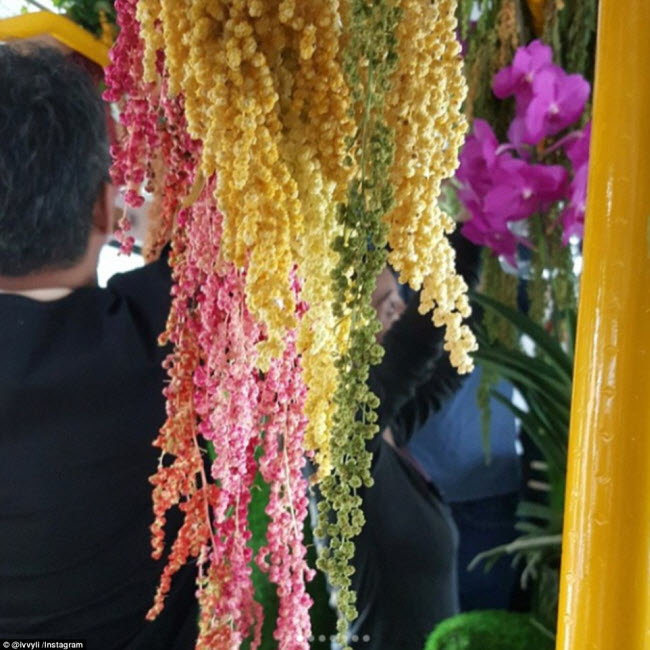 """""""Trốn nóng"""" trong xe bus """"rừng"""" lạ lùng ở Đài Loan - 3"""