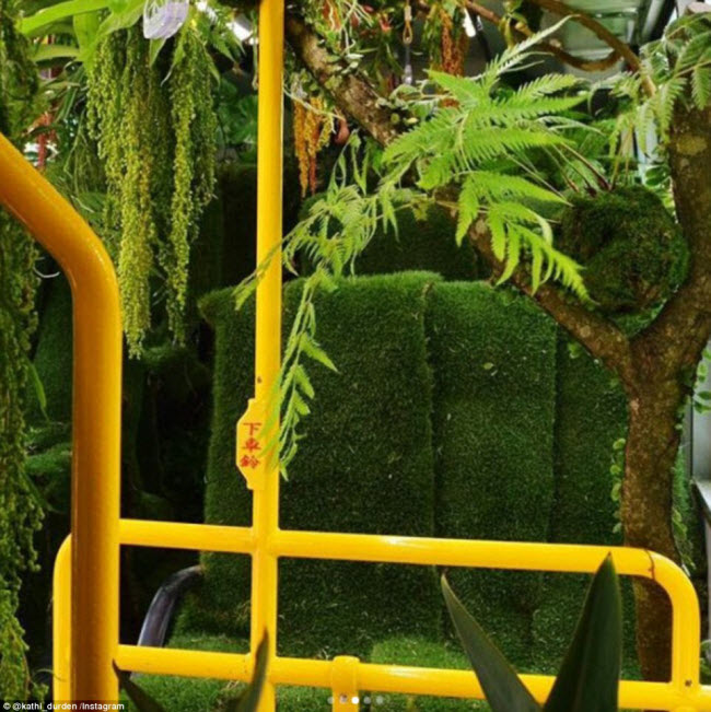 """""""Trốn nóng"""" trong xe bus """"rừng"""" lạ lùng ở Đài Loan - 7"""