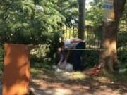 Tin tức trong ngày - Người đàn ông gục chết bên gốc cây, nghi do nắng nóng