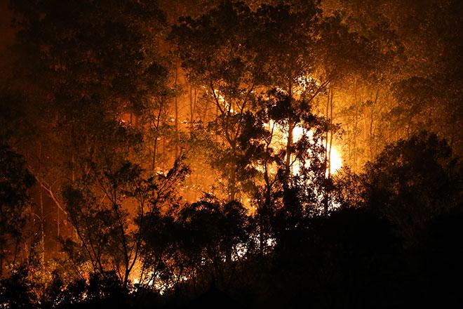 Hiện trường vụ cháy rừng lớn nhất lịch sử ở Sóc Sơn - 3